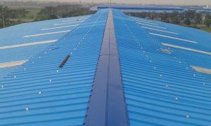 Chuyên chống dột mái tôn nhà xưởng
