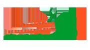 Logo Thái Sơn