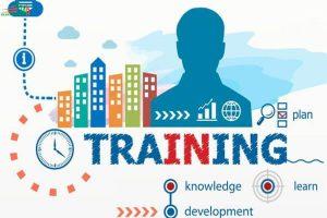 Training là gì? Tại sao nên tiến hành training?